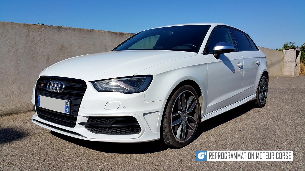 Audi S3 8V 2.0 TFSI 300cv
